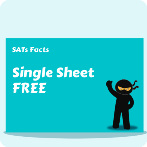 Maths SATs Facts - Single Sheet