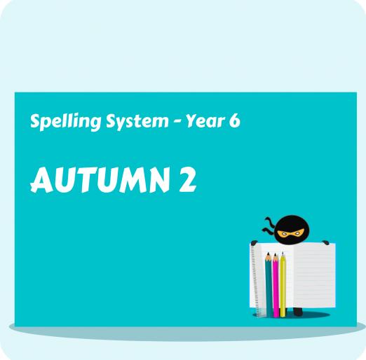 Spelling System (17)