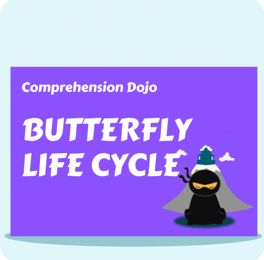 Comprehension Dojo - Butterfly Life Cycle