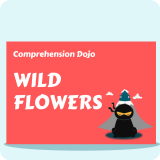 Comprehension Dojo - Wild Flowers