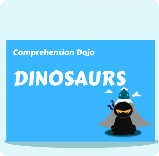 Comprehension Dojo (4) (1)