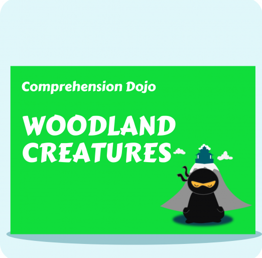 Comprehension Dojo (7) (1)