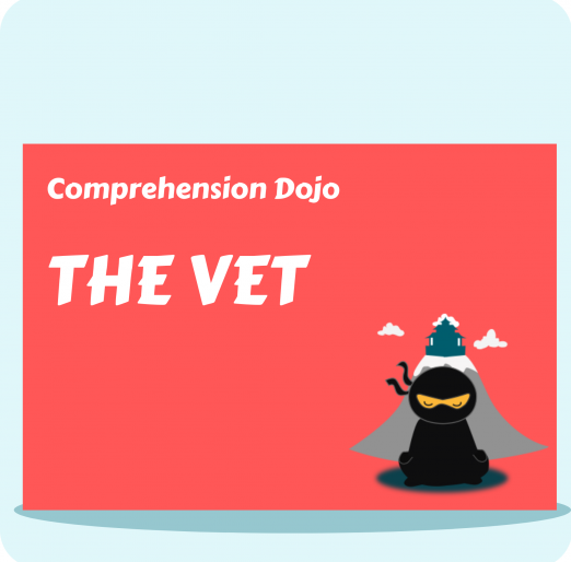Comprehension Dojo - The Vet
