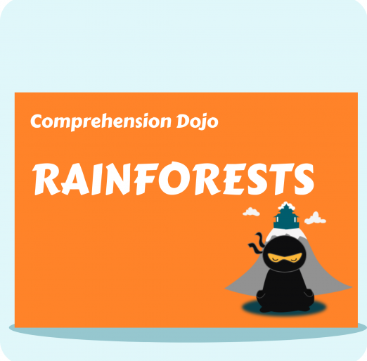 Comprehension Dojo (11)