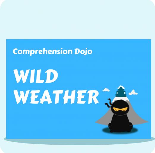 Comprehension Dojo (5) (2)
