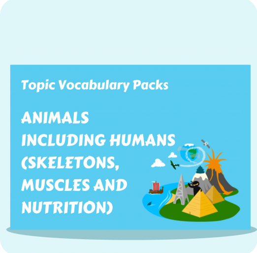 Topic Vocabulary Packs