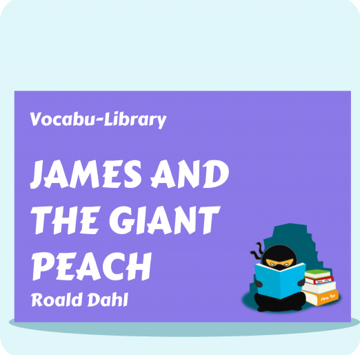 Vocabu-Library (1)