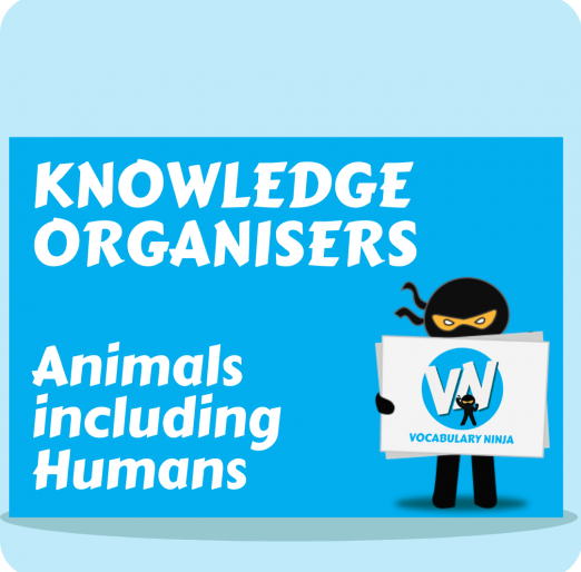 KO Animals including Humans