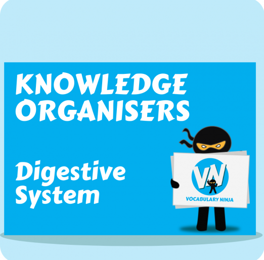 KO Digestive System